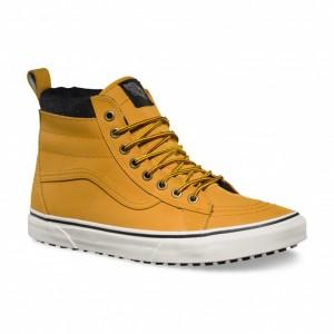 Vans Mountain Shoes?